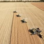 droni agricoltura mappature agricolo riprese aeree professionali bergamo