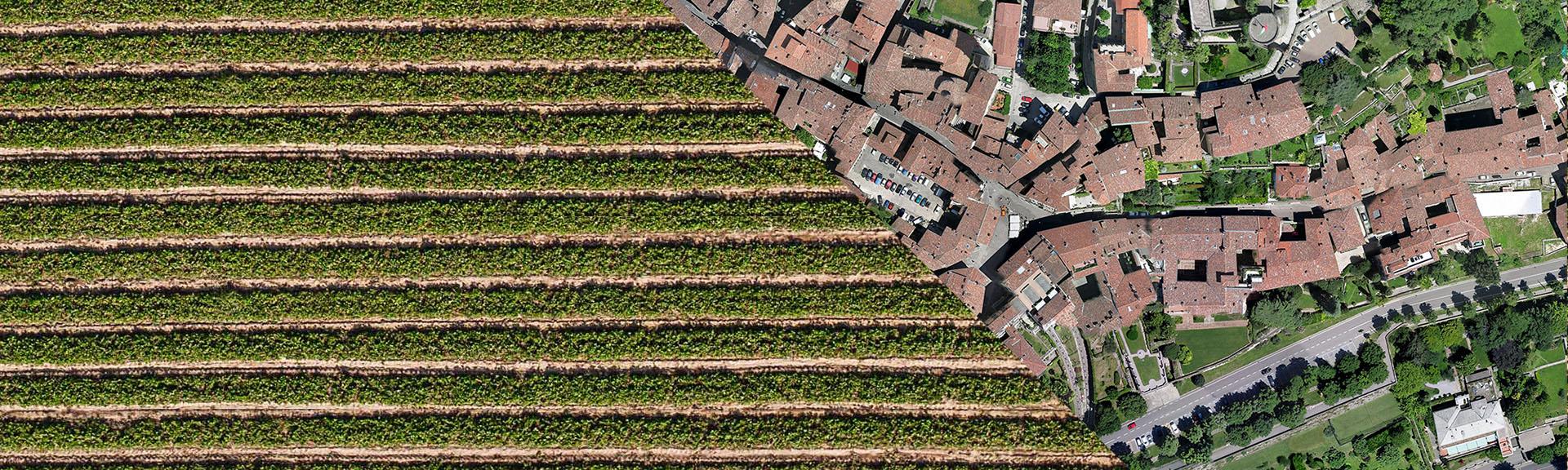 rilievi agricoli drone professionale droni